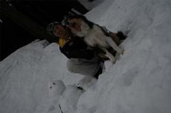 Snowboard2006